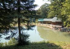 Этнографический комплекс Вольница