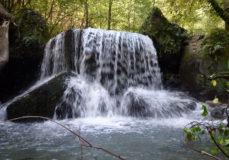 """Водопад """"Водолей"""""""