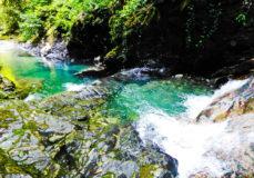 Сказочный мир и водопады ручья Сванидзе